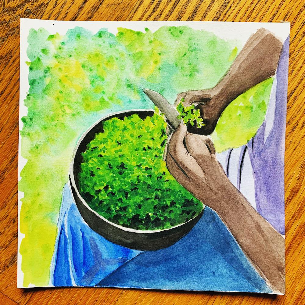 Cutting Moringa Leaves Watercolor painting