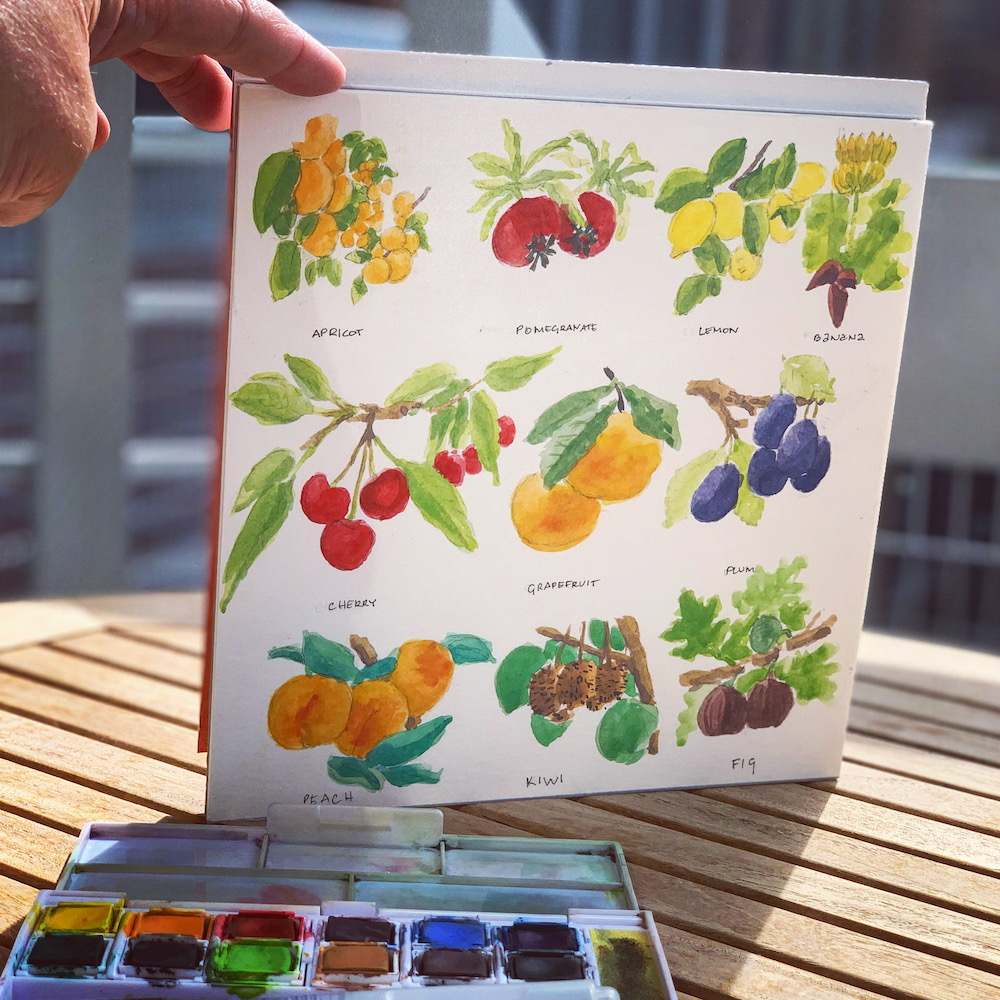 Watercolor fruit exercise